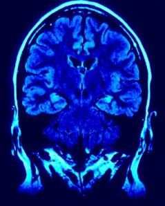 neuroscience-and-the-mind-of-christ